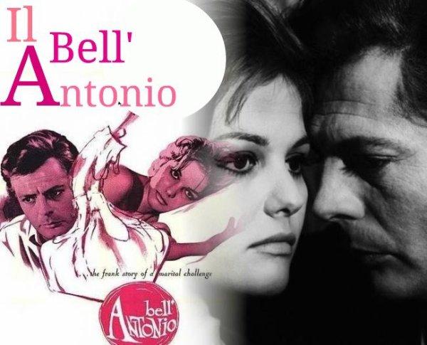 Le Bel Antonio (Il Bell'Antonio) Mauro Bolognini