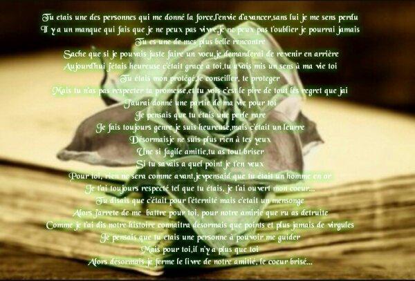 ~Le livre de notre amitié...~
