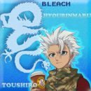 Photo de Blog---Bleach