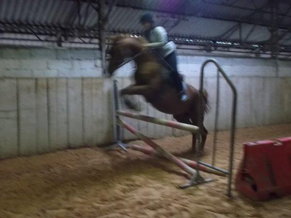 Voler par dessus un obstacle c'est la meilleur chose
