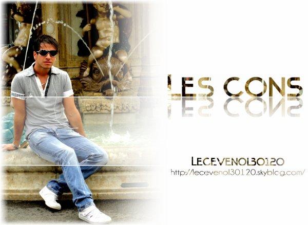 . . . Les Cons Montage réalisé le : 08/10/10 . . .