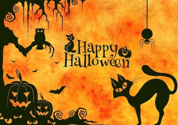 voila les amis bientot halloween