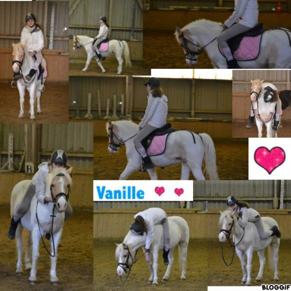 Vanille !!!