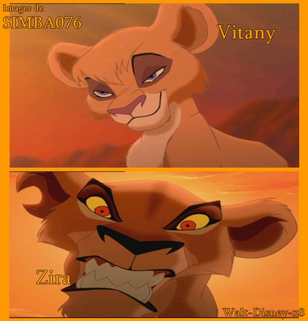 Vitany VS Zira