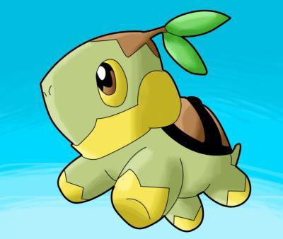Blog de les pokemons plantes page 3 vie de pokemons plantes - Evolution tortipouss ...