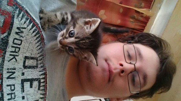 Moi une mon petit chat