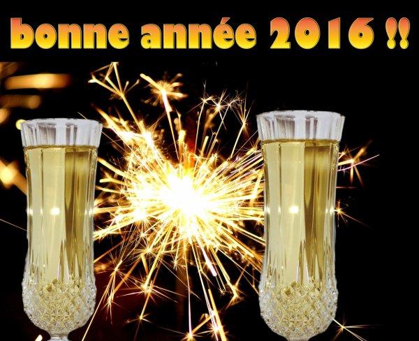 ADIEU 2015 BIENVENUE 2016