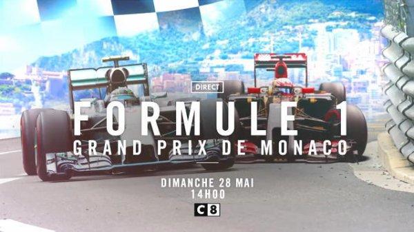 FORMULE 1 : GRAND PRIX DE MONACO , LA GRILLE DE DEPART