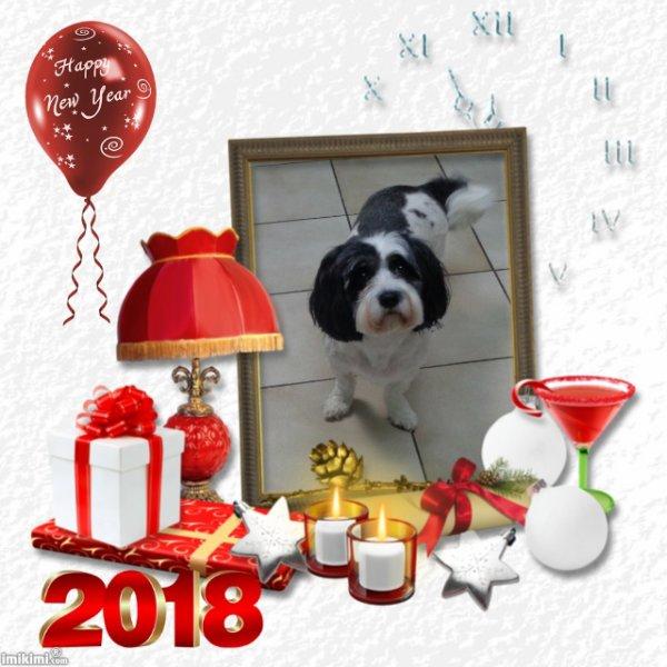 BONNE ANNEE 2018 LIZALOVE