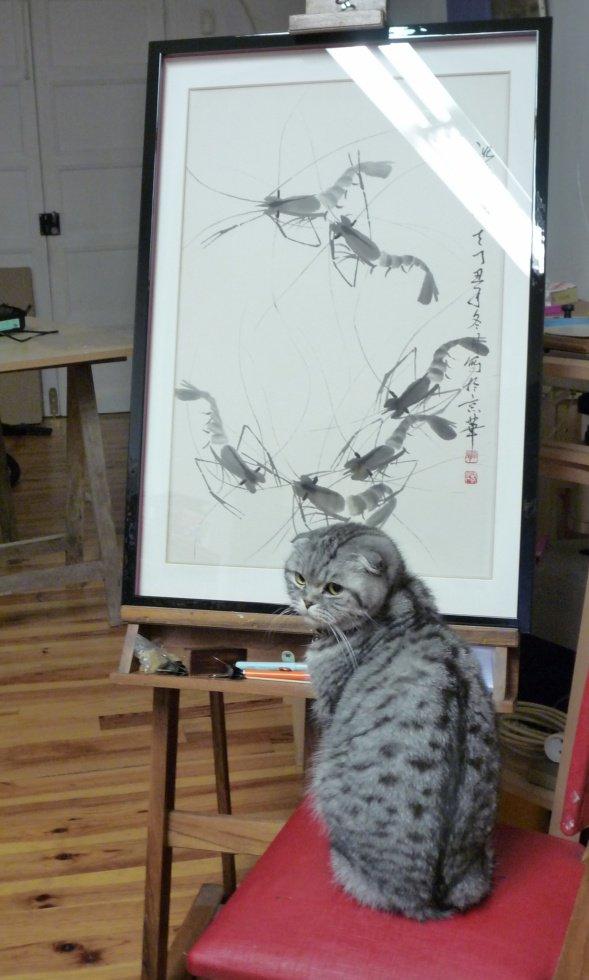 peinture pour chats