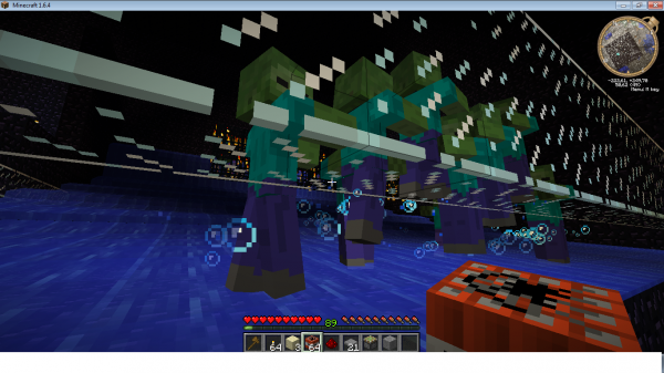 En avant vers Minecraft =p