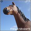 PonysXBazard