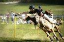 Photo de aventura-horses