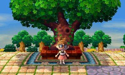 Des nouvelles de moi,ma ville et l'arbre central.