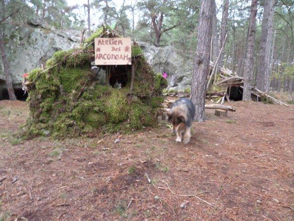 Cabane, terrier, grotte, l'embarras du choix !