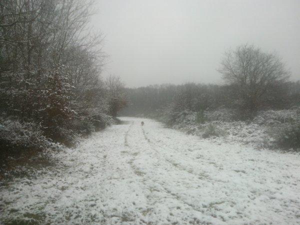 Février enneigé ...