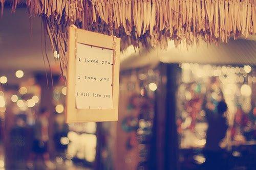 """""""À chaque adolescent qui voudrait s'arracher à la vie, j'aimerais murmurer que tout ira bien, que rien n'est si grave, au fond. Que la réussite n'est rien qu'une façon plus ou moins habile de déguiser les incessants échecs d'une vie. Sur des cahiers, les ratures sont jolies, elles donnent au texte une force, un rythme, une ondulation. Une pause"""""""