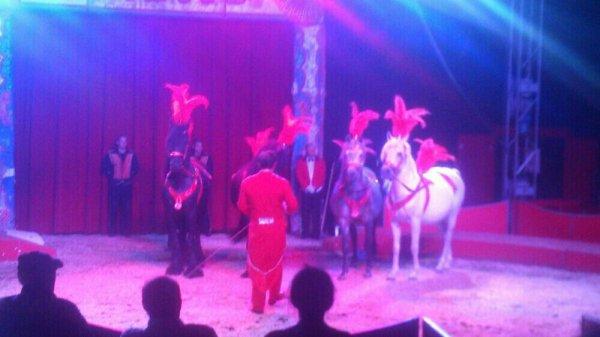 Trop beau cirque j'ai adorer hier