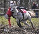 Photo de pony-games2009