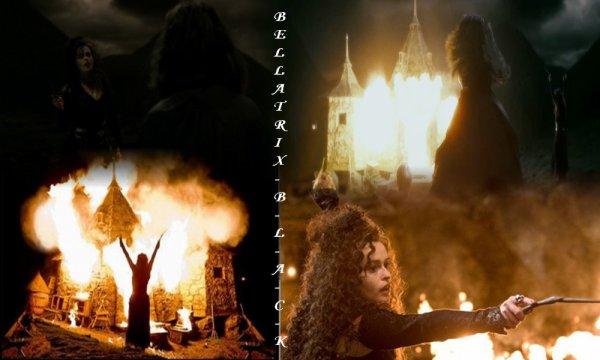 Blog de Bellatrix-B-l-a-c-k : Scene Finale