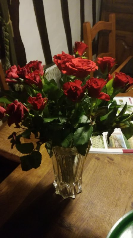 les fleurs de FRANCOISE