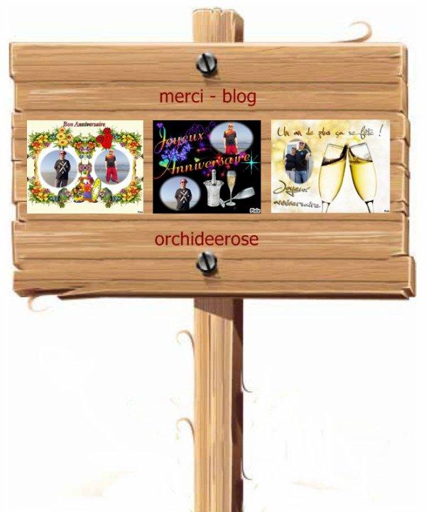Blog - amina-princesse-reveuse .. blog - orchideerose ..  blog - sylvie166 .. blog - josy41 .. Vous méritez un grand MERCI pour ce cadeau . Je suis vraiment heureux d'avoir des amis tels que vous . Je suis comblée ...