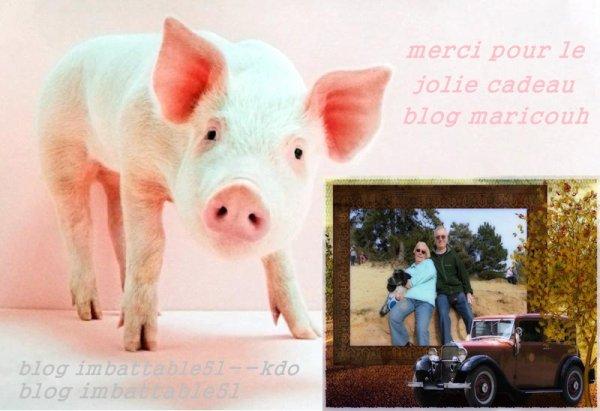 Blog - MARICOUH ... Vous méritez un grand MERCI pour c'est beau cadeau . Je suis vraiment heureux d'avoir des amis tels que vous . Je suis comblée ...