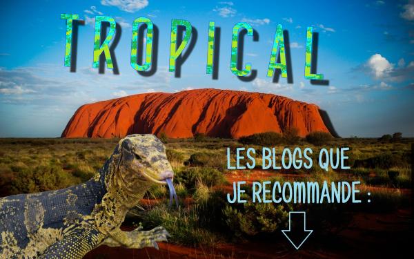 ⛵ Bienvenue sur le blog dédié au pays des kangourous ! 🌴