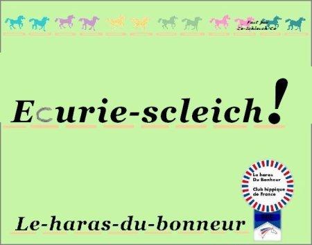 Bienvenue au haras du bonheur! Ce blog parlera des schleich et papo donc des chevaux!