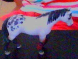 Voici le custom du cheval d'école : PS la photo n'est pas trop jolie dsl. c'est mon premier custom!!!
