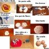 Voici tout mes objets faits en pâte à sel :