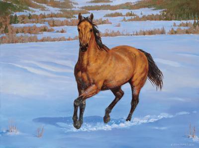 Le cheval galop dans le neige blog de anesmsn - Comment dessiner un cheval au galop ...