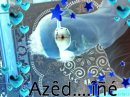 Photo de azedine407