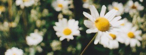 Trouve quelque chose qui te rend heureux etne laisse jamais personne te l'enlever.