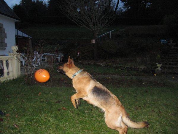 Daïka aime les ballons !