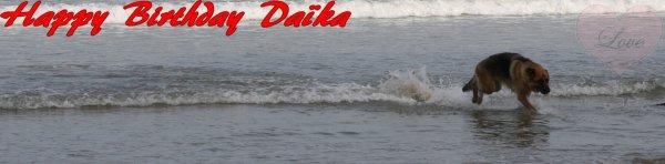 Happy.-Birthday Daïka