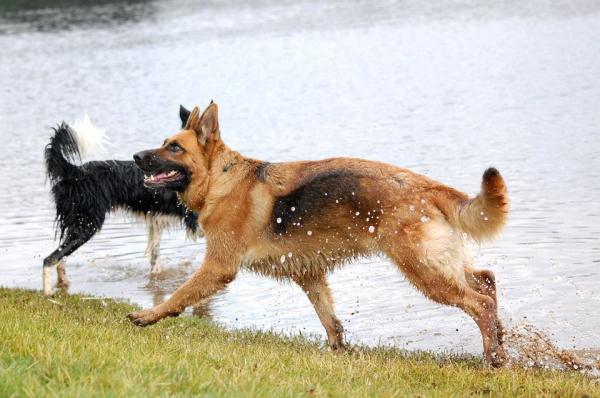 16.08.2011, au Lac avec Elodie ♥