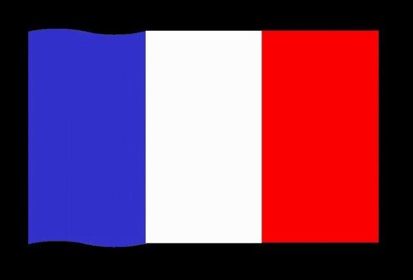 Fier de cette  France -Theo- Bravo- manifestation pour Theo.