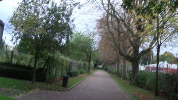 Chemins d'automne/route d'automne 2017