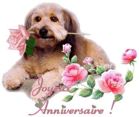 ...kado  pour mon amie Josy 41 Joyeux  Anniversaire ..bisous Manon..
