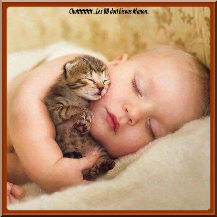 ..Bonne nuit mes ami(e)s...