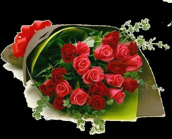 ..kado de mon ami  Dauphin159112 ( Roland)....Merci