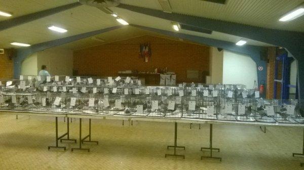 expo roquetoire