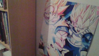 Dragon Ball !!
