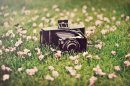Photo de Photo-Graphy-Concours