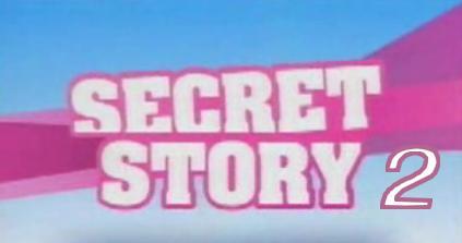 sondage sur secret story 2