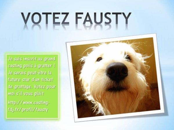 LE GRAND CASTING POILS A GRATTER !  VOTEZ FAUSTY