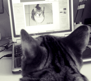 héhé super idée maman ma crée un blog !