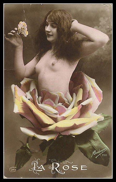 Rose, un peu à la manière de Marceline DESBORDES-VALMORE