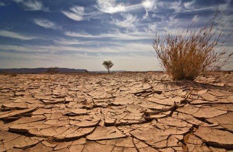 Une voix crie dans le désert (Jn 1, 6-28)